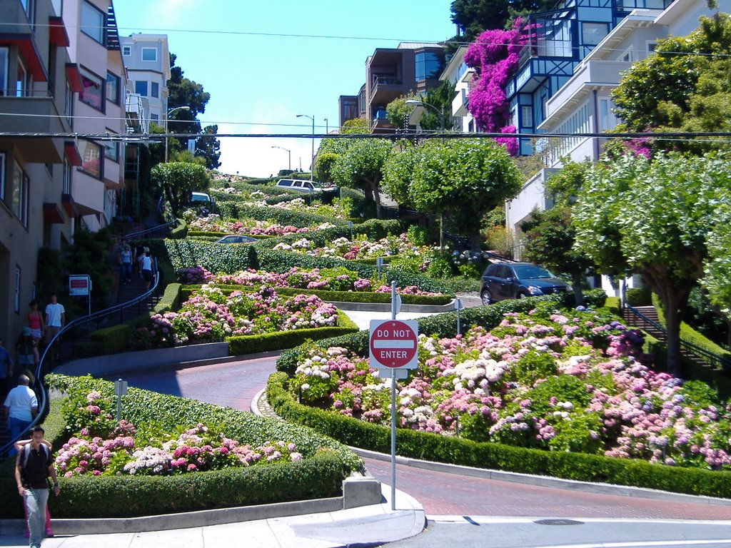 """Lombard Street in San Francisco""  Lombard Street one of the most beautiful streets in the world 1609943  HOME PAGE 1609943"