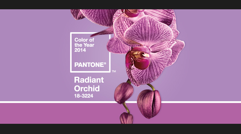 """Radiant Orchid""  Why we love Radiant Orchid so much radiant orchid"
